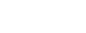 Client First Solutions Logo White